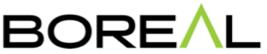 Boreal climbing and hiking shoe logo